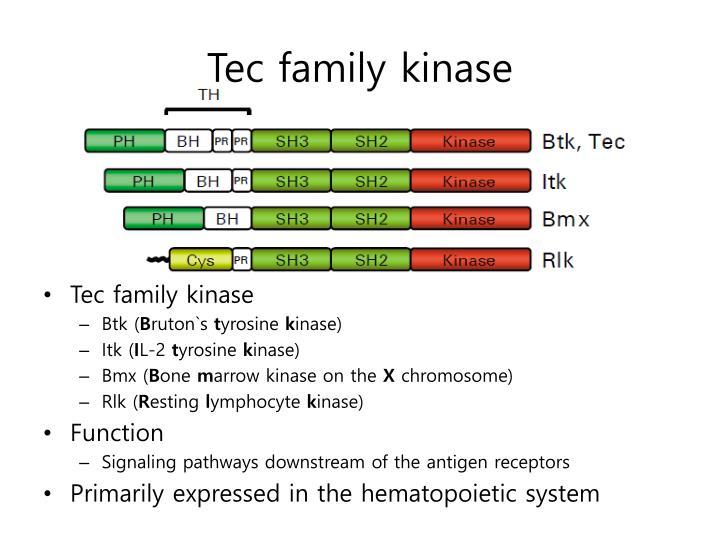 Tec family