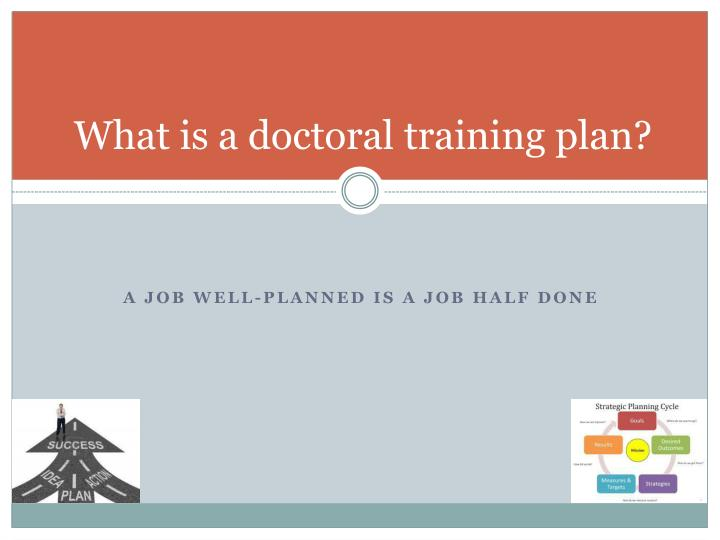 What is a doctoral training plan