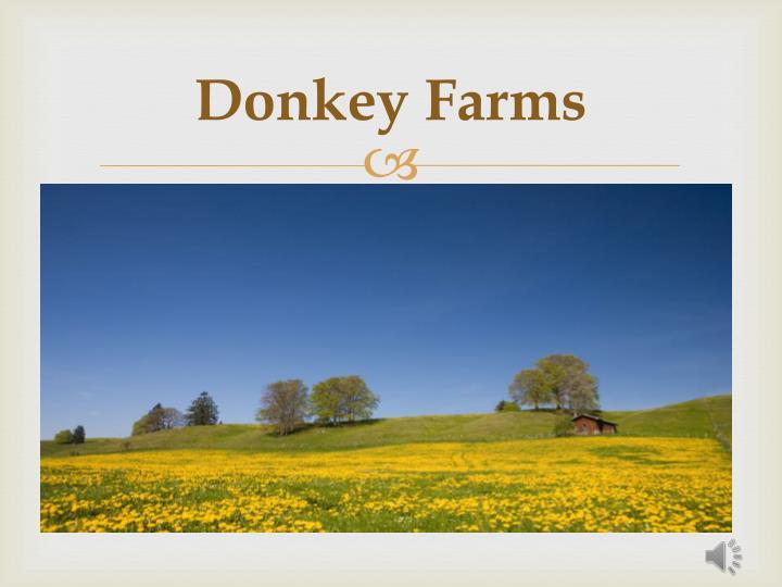 Donkey Farms