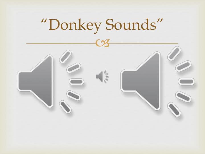 """""""Donkey Sounds"""""""