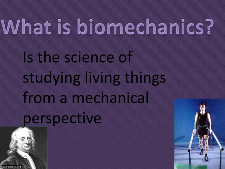 What is biomechanics?
