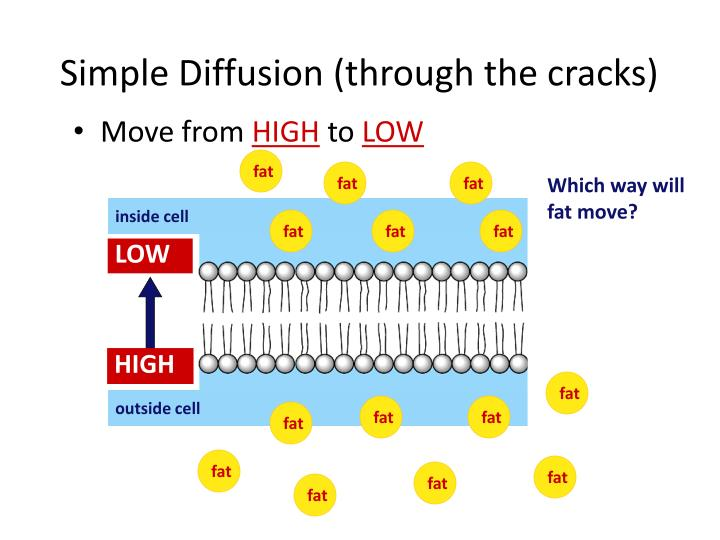 Simple Diffusion (through the cracks)