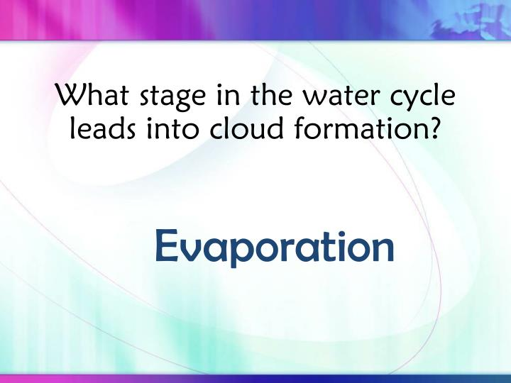 What stage in the water cycle leads into cloud formation?