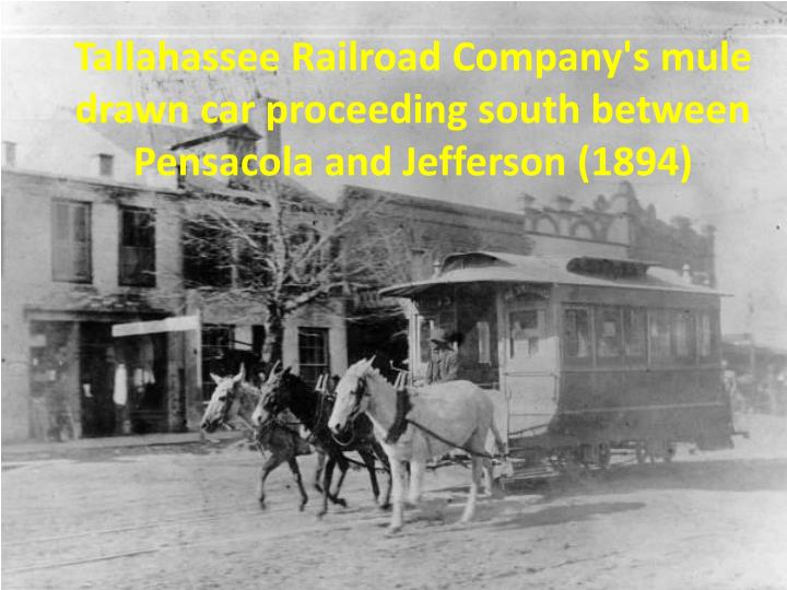 Tallahassee Railroad Company's mule drawn car proceeding south between Pensacola and Jefferson