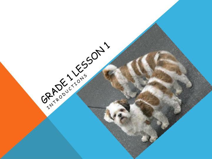 Grade 1 Lesson 1