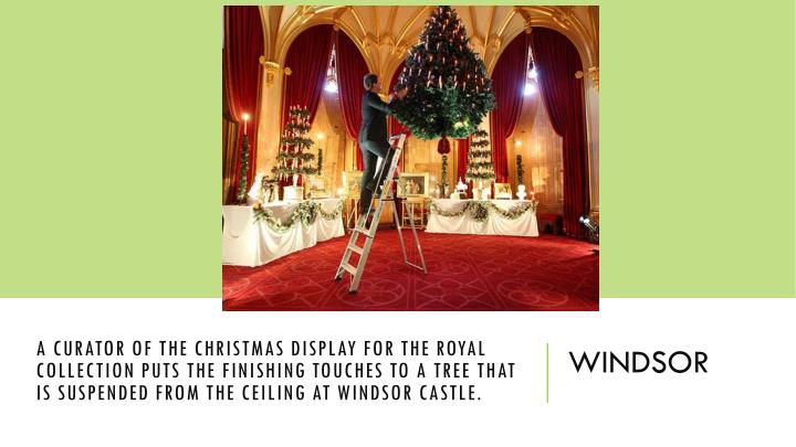 a curator of the Christmas display for the Royal Collection puts the finishing touches to a tree that is suspended from the ceiling at Windsor Castle.