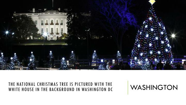 The National Christmas Tree is pictured with the White House in the background in Washington DC