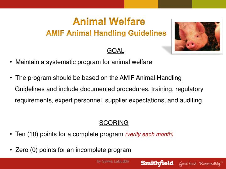 Animal Welfare
