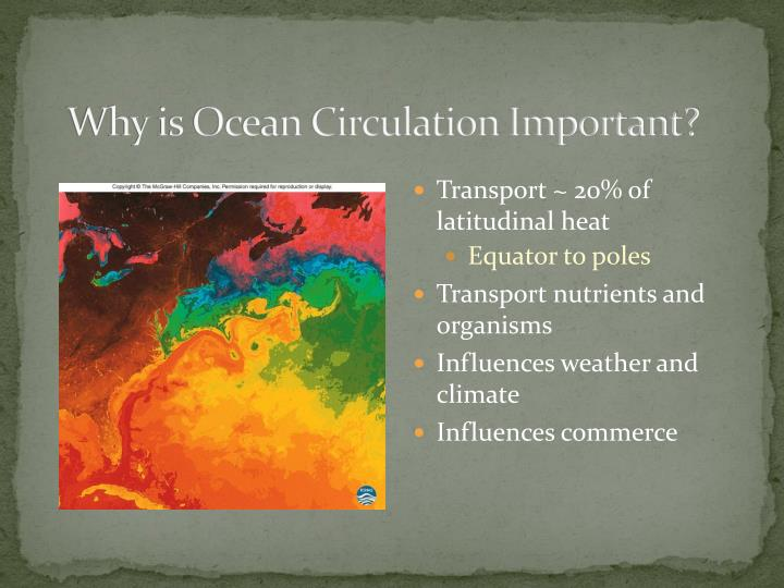 Why is Ocean Circulation Important?