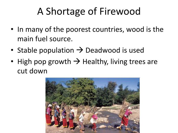 A Shortage of Firewood