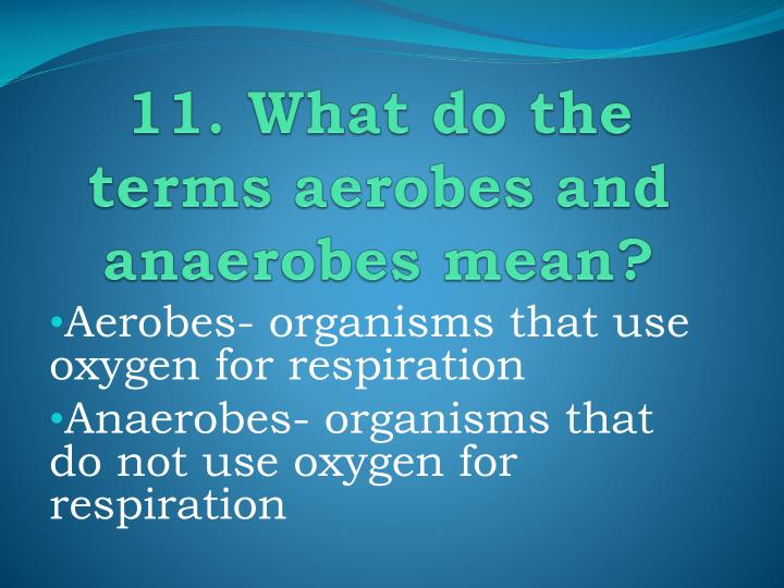 11. What do the terms aerobes and anaerobes mean?