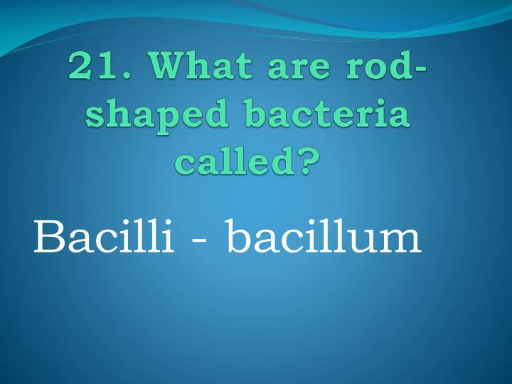 21. What are rod-shaped bacteria called?