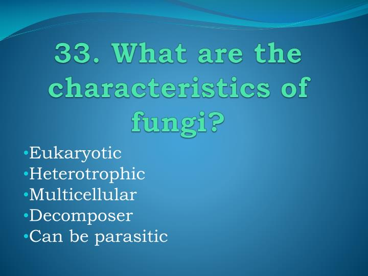 33. What are the characteristics of fungi?