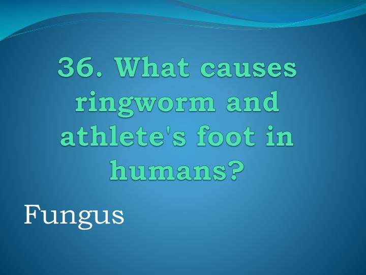 36. What causes ringworm and athlete's foot in humans?
