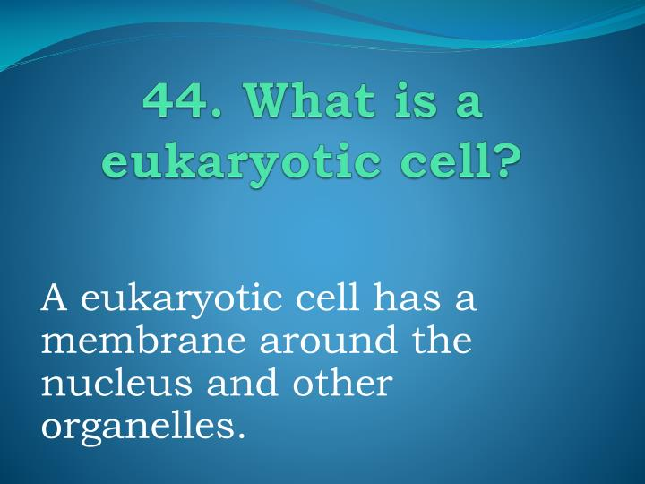 44. What is a eukaryotic cell?