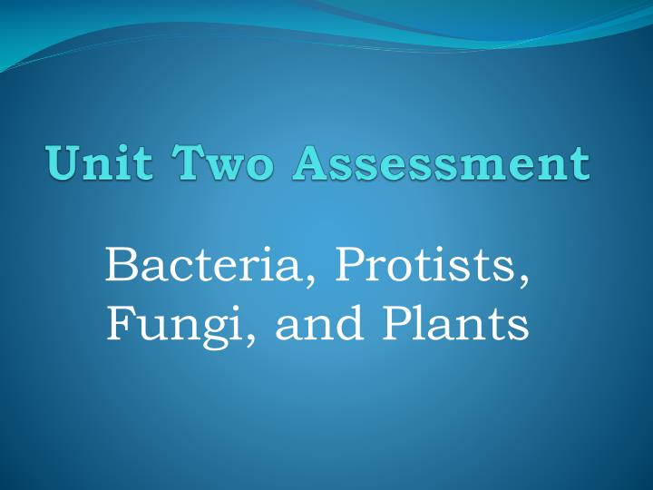 Unit Two Assessment