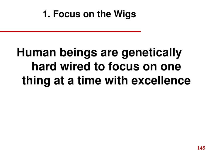 1. Focus on the Wigs