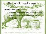 theodore roosevelt s impact1