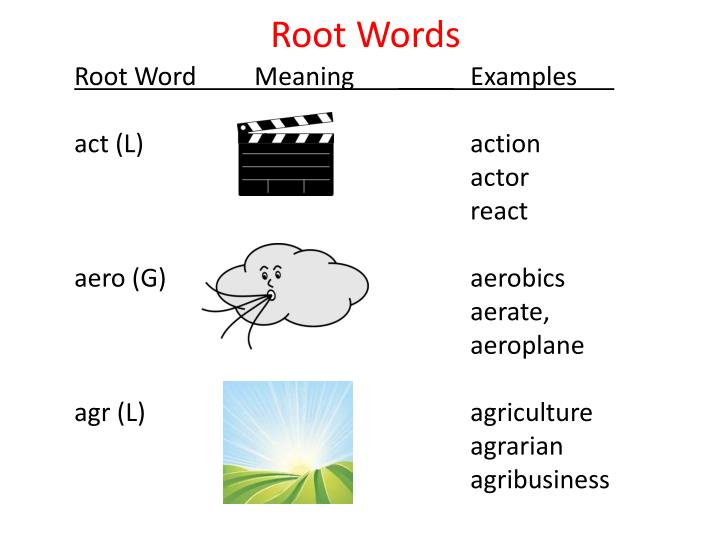ppt - root words powerpoint presentation