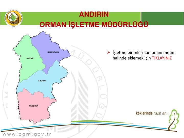 ANDIRIN