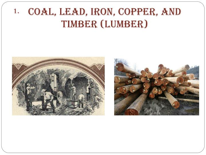 Coal lead iron copper and timber lumber
