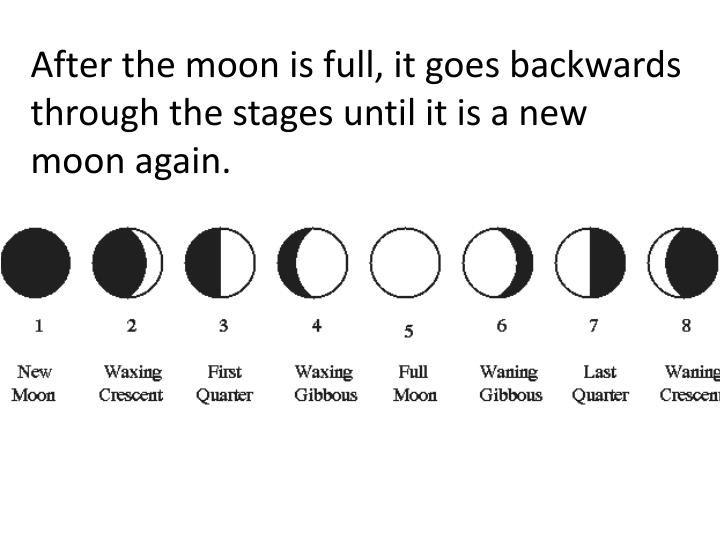 After the moon is full, it goes backwards through the stages until it is a new moon again.