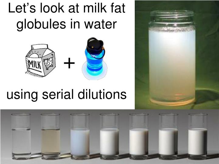 Let's look at milk fat globules in water