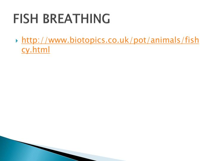 FISH BREATHING