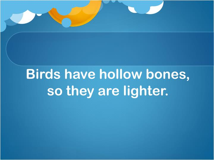 Birds have hollow bones, so they are lighter.