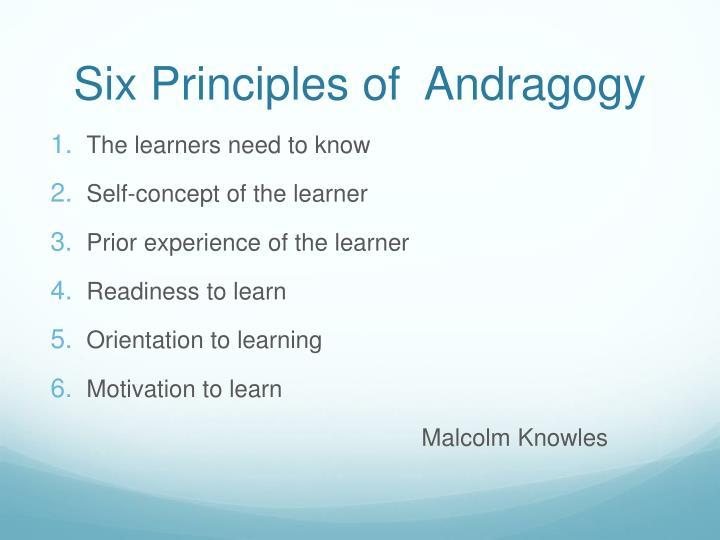 Six Principles of