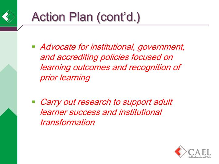 Action Plan (cont'd.)