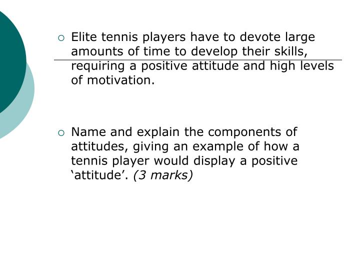 Elite tennis players have to devote large amounts of time to develop their skills,