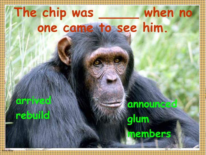 The chip was _____ when no one came to see him.