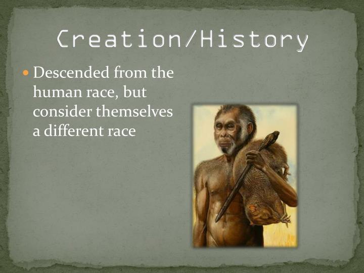 Creation/History