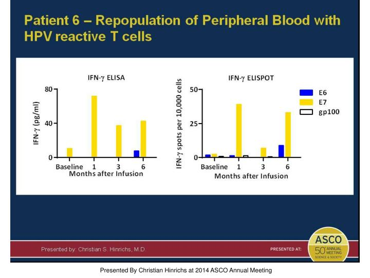 Patient 6 – Repopulation of Peripheral Blood with HPV reactive T cells