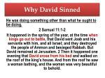 why david sinned