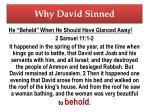 why david sinned1