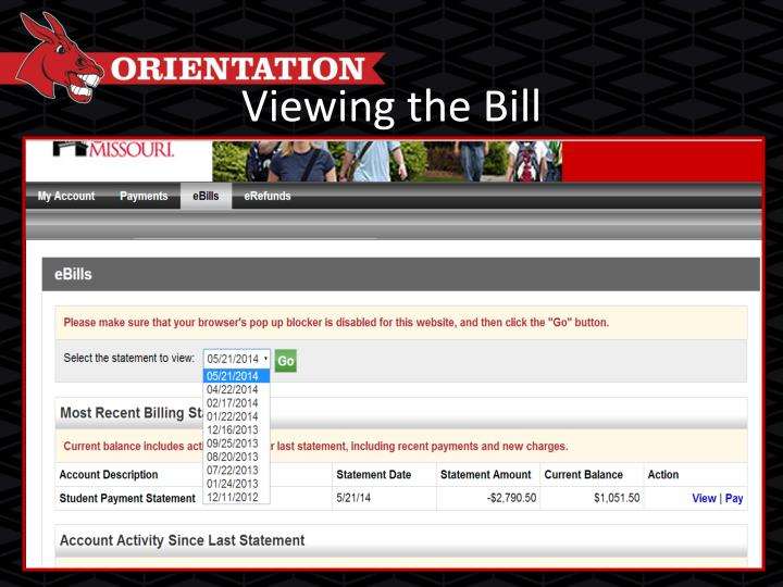 Viewing the Bill