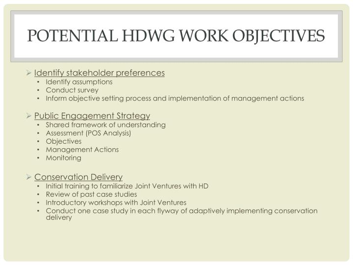 potential HDWG Work Objectives