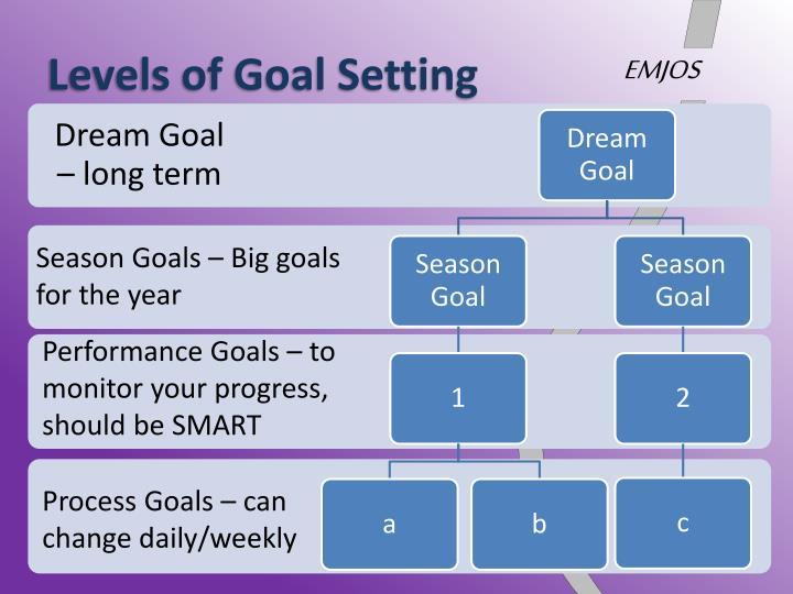 Levels of Goal Setting