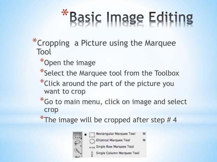 Cropping  a Picture using the Marquee Tool