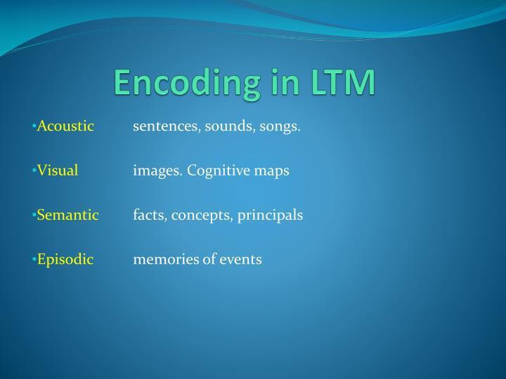 Encoding in LTM