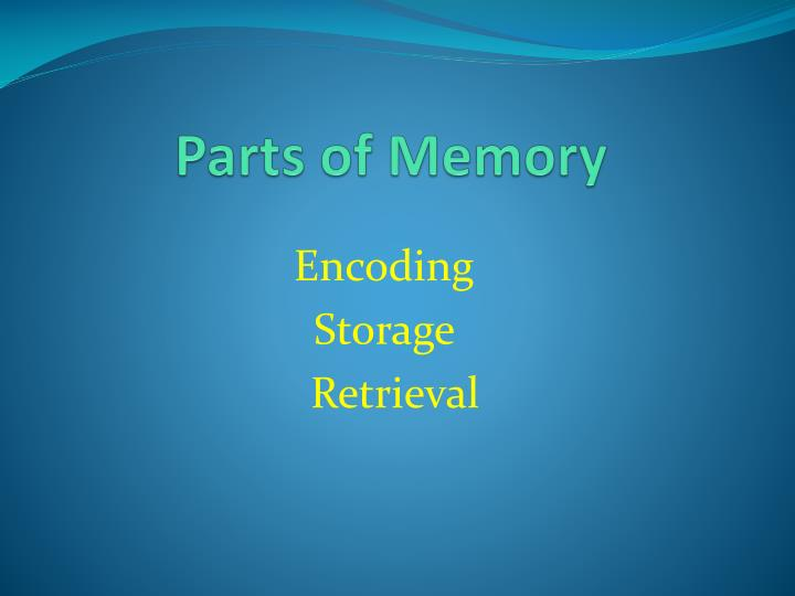 Parts of Memory