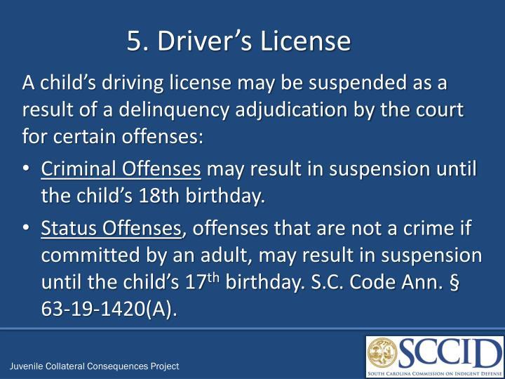 5. Driver's License
