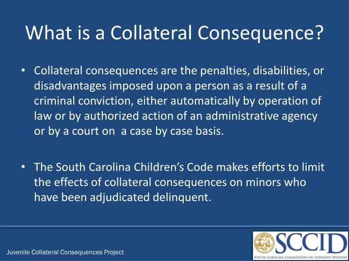 What is a Collateral Consequence?