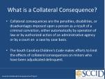 what is a collateral consequence