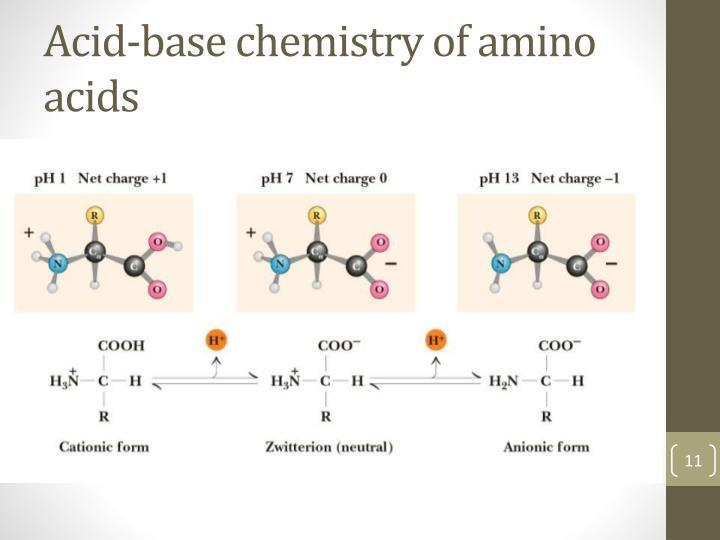 Acid-base chemistry of amino acids