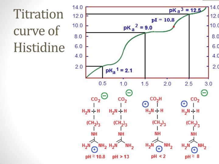 Titration curve of