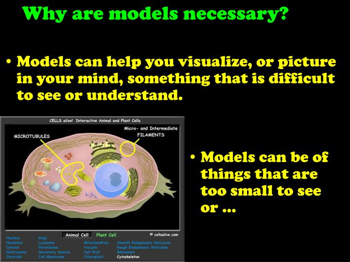 Why are models necessary?