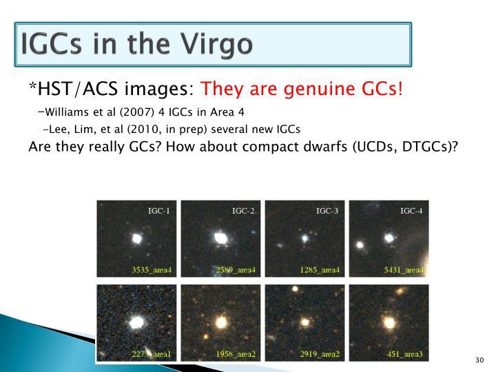 IGCs in the Virgo